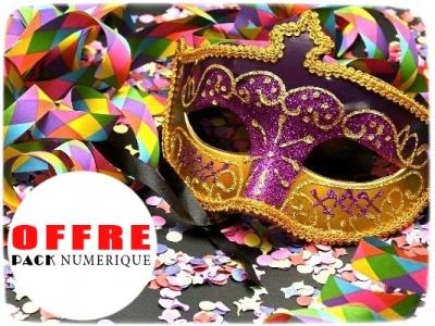 Protégé: La poneyterie de Millery Challenge Carnaval le 10/02/2019